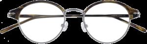 Epos Eyewear LearBV