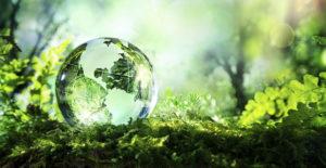 fabricant verres écologique
