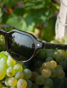lunettes écologiques Friendly Frenchy faites en France en coquillage et raisin