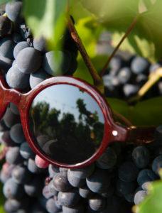 lunettes écologiques Friendly Frenchy faites en France lie de vin